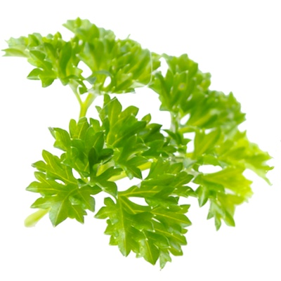 fresh parsley or tarragon